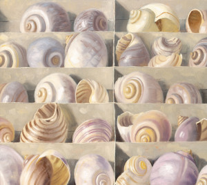 shells box detail bg