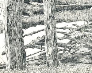houtwal ets detail 2015 Menno Balm